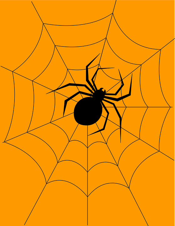 Halloween, Spider, Cobweb, Spider Web, Orb, Icon