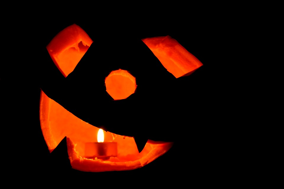 Halloween, Pumpkin, Carved Pumpkin, Jack-o-lantern
