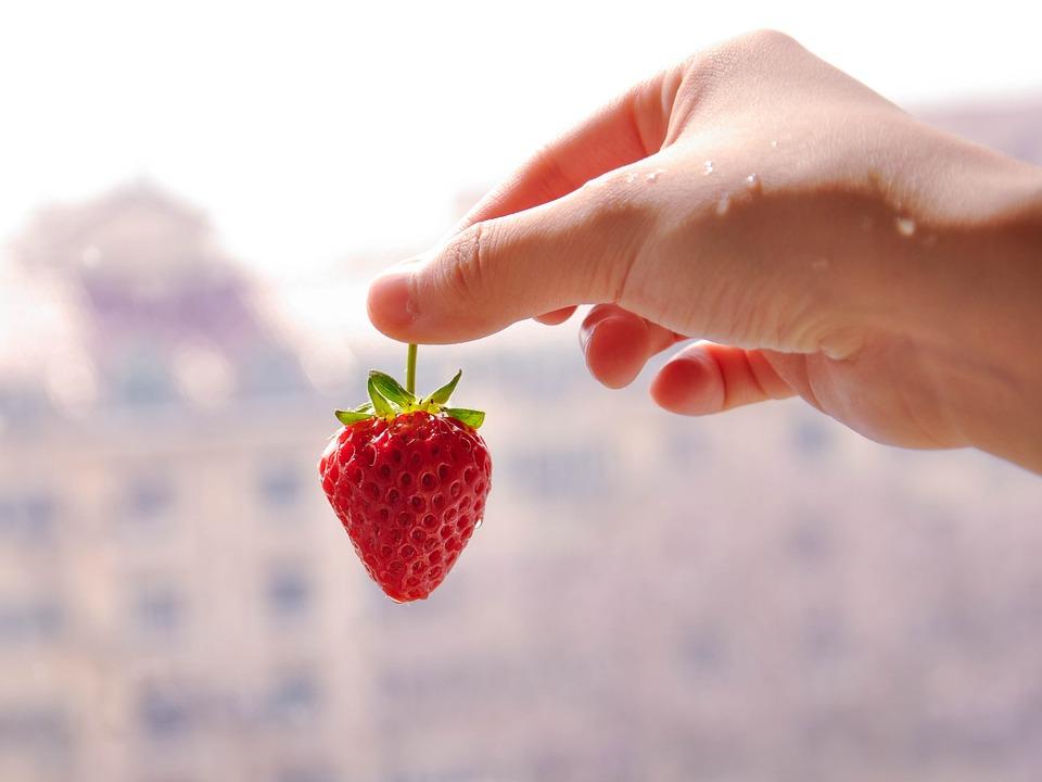 Strawberry, Hand, Fruit