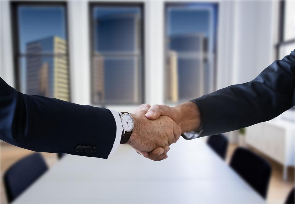 Shaking Hands, Handshake, Hands, Work, Hand Giving