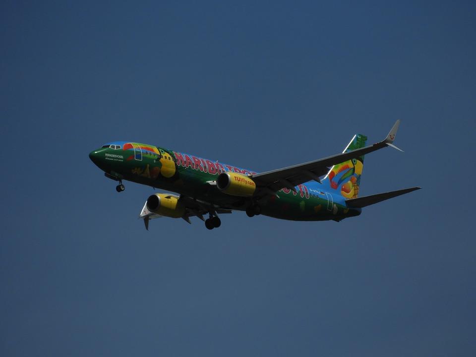 Landing, Aircraft, Sky, Land, Hanover, Haribo, Tuifly