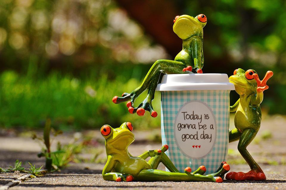 Free Photo Happiness Joy Happy Coffee Beautiful Day Cup Frog Max Pixel