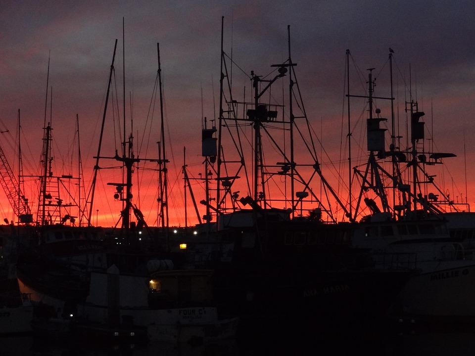 San Diego, Boats, Sail, Bay, Harbor, California