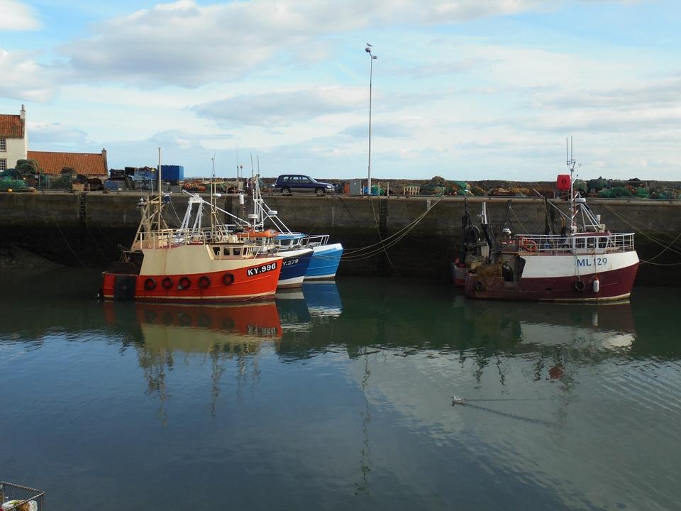 Boat, Harbour, Water, Harbor, Ship, Port, Bay, Fishing