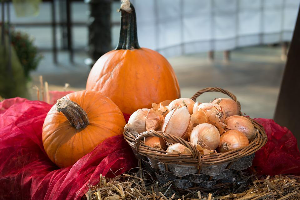 Pumpkin, Onions, Thanksgiving, Harvest, Vegetables