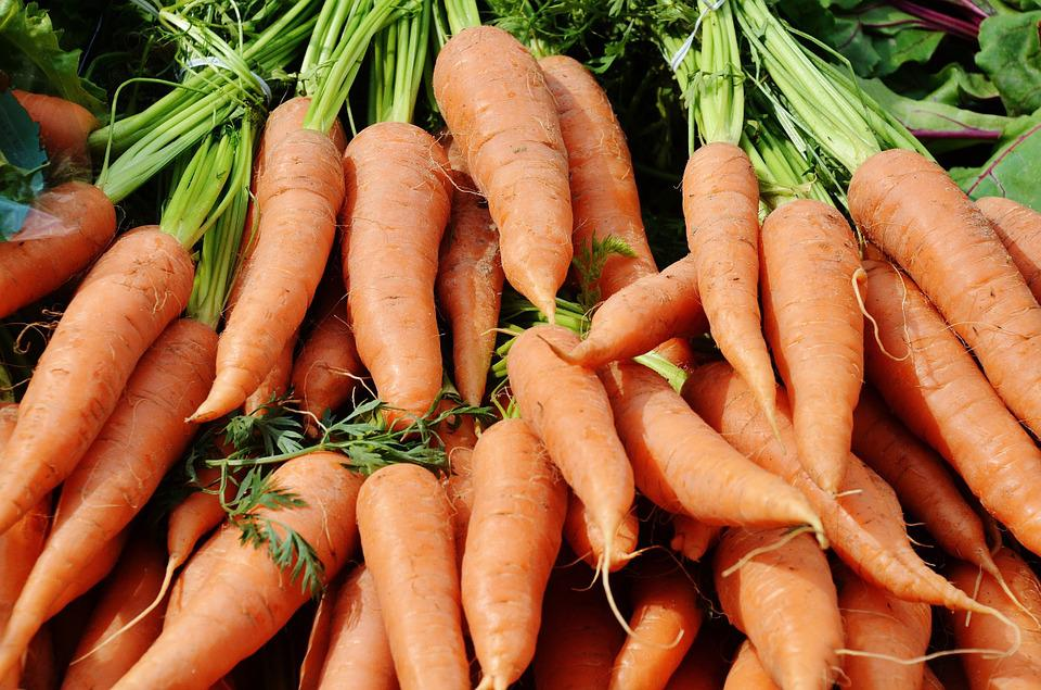 Carrots, Vegetables, Harvest, Plant, Fresh, Nature