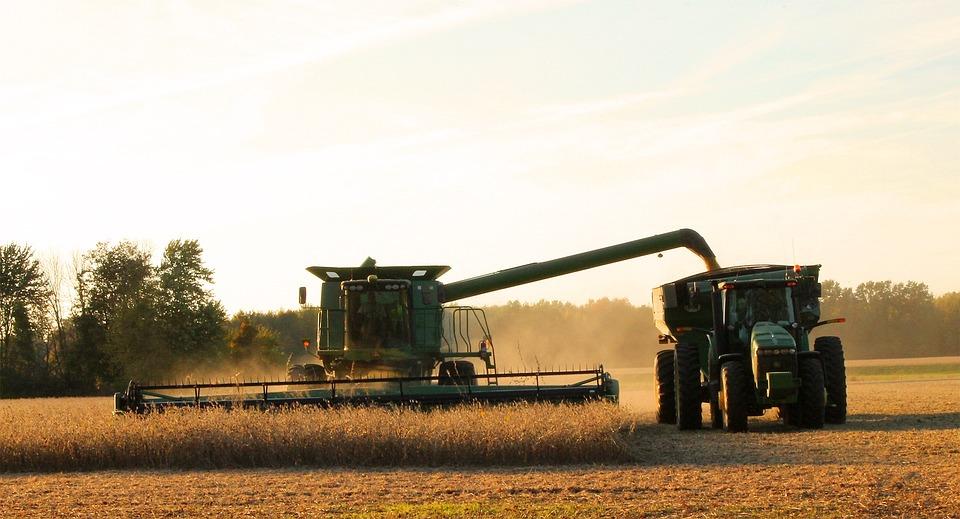 Harvest, Harvester, Teamwork, Harvesting, Soybean