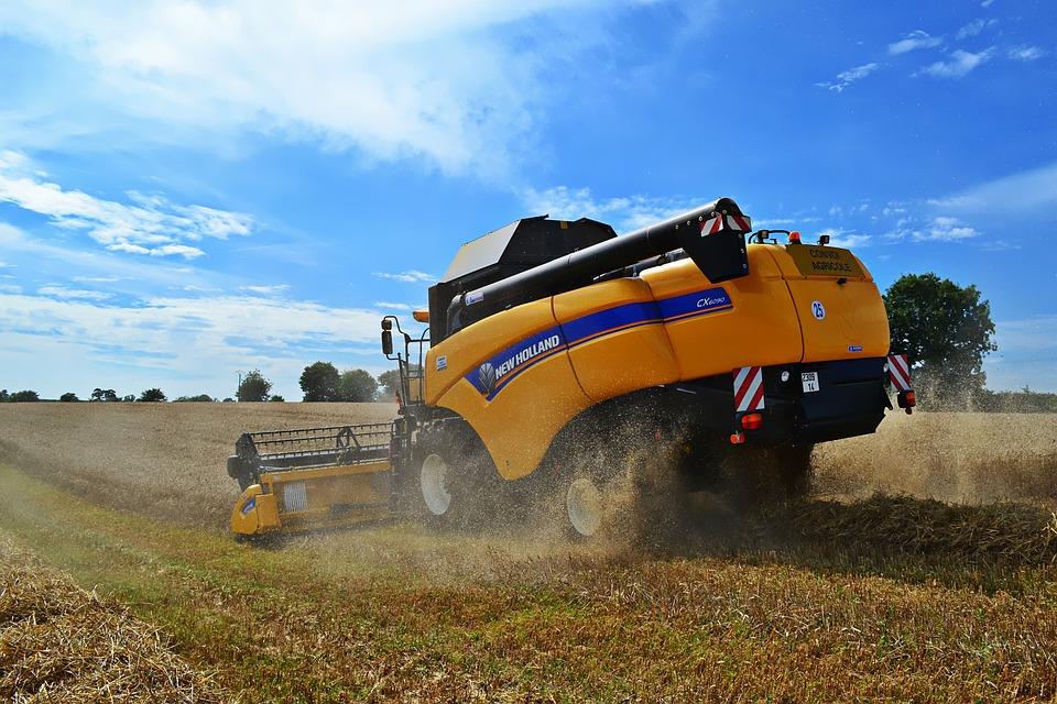 Harvester, Wheat, Harvest
