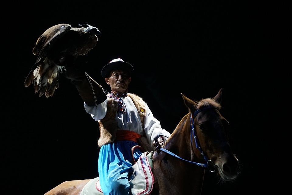 People, Eagle, Horse, Training, Hasa