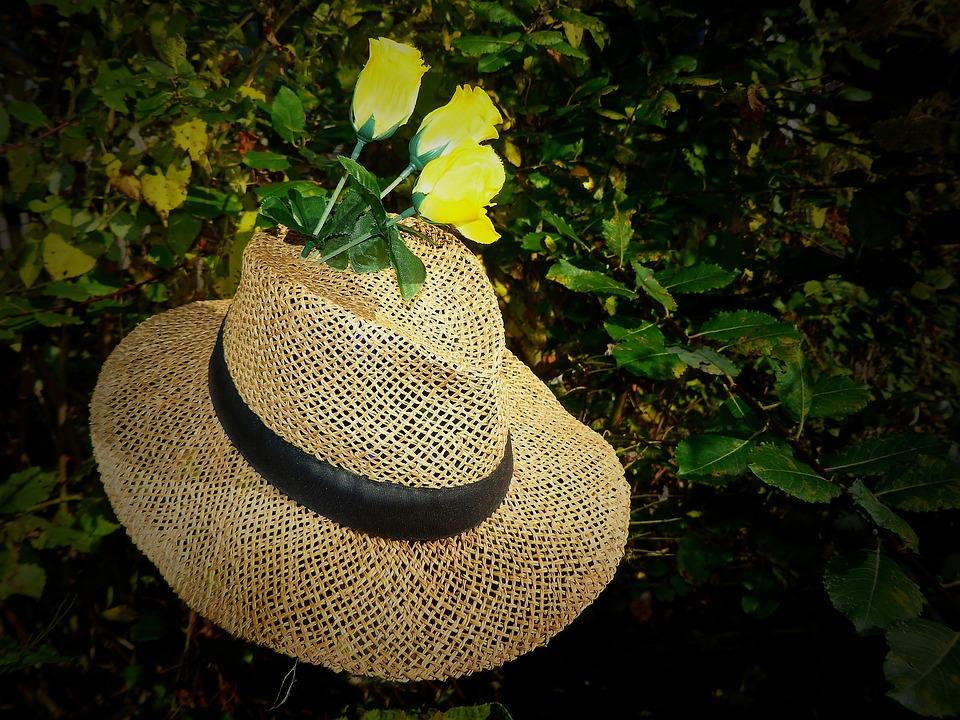 Straw Hat, Hat, Coneflower, Sun Protection, Headwear