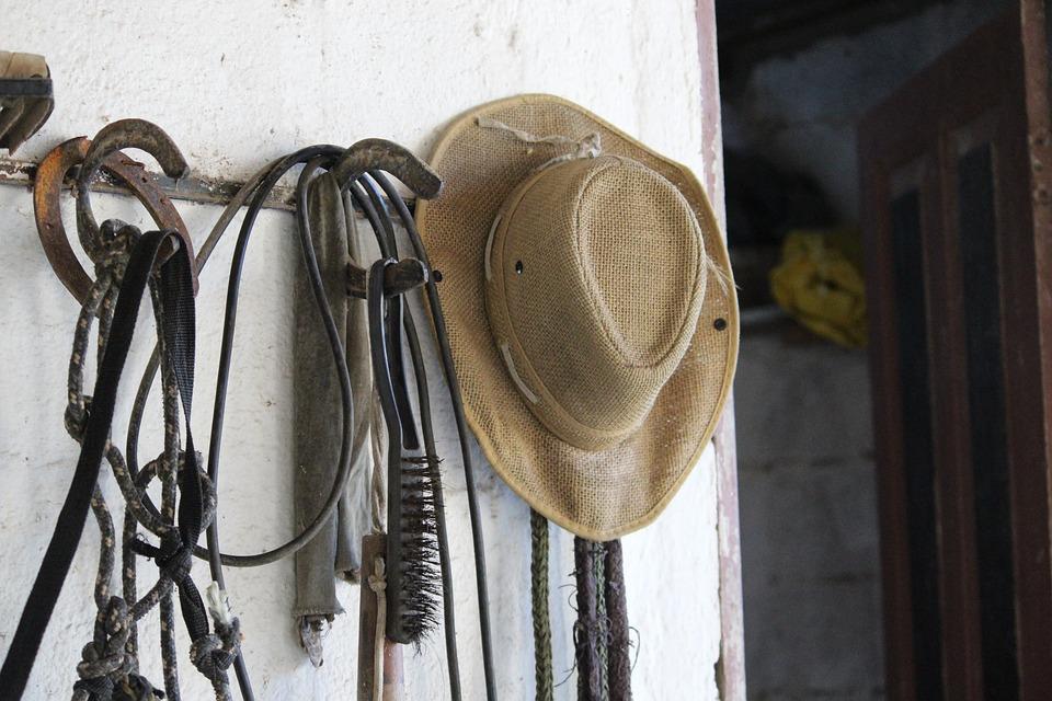 Hat, Horse, Stable, Cowboy