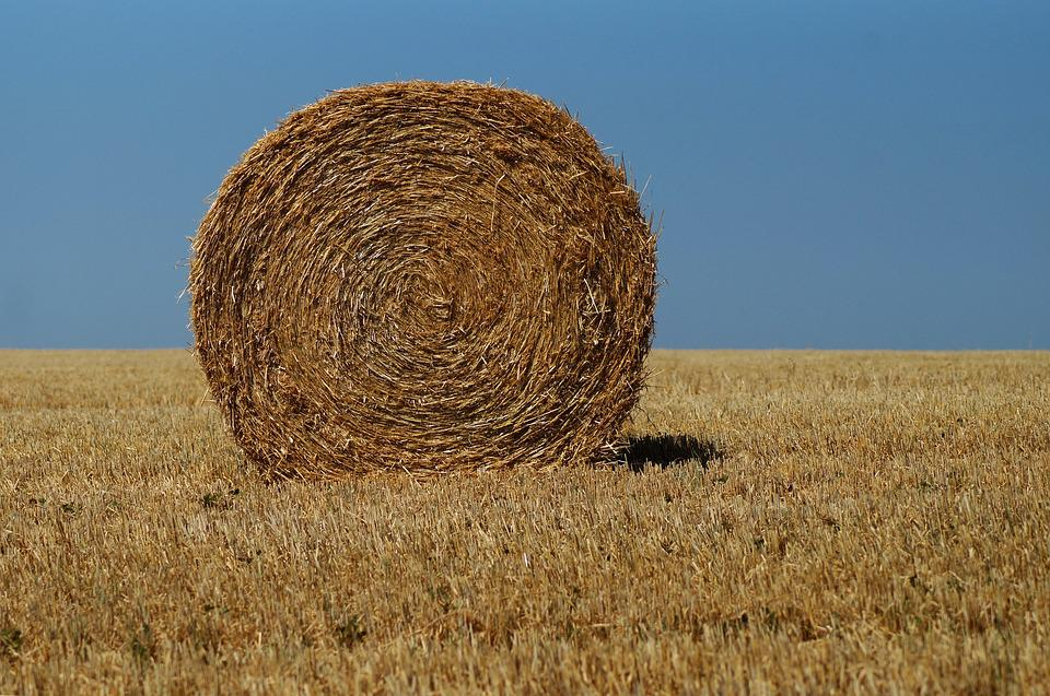 Hay Bales, Straw, Agriculture, Harvest, Hay, Field