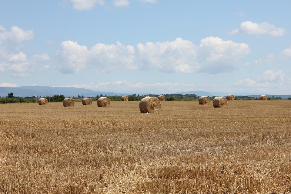 Summer, Hay, Landscapes, Haystacks, Fields, Sky