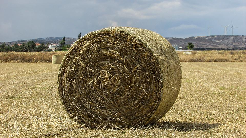 Hayball, Hay, Forage, Dry Grass, Agriculture, Rural