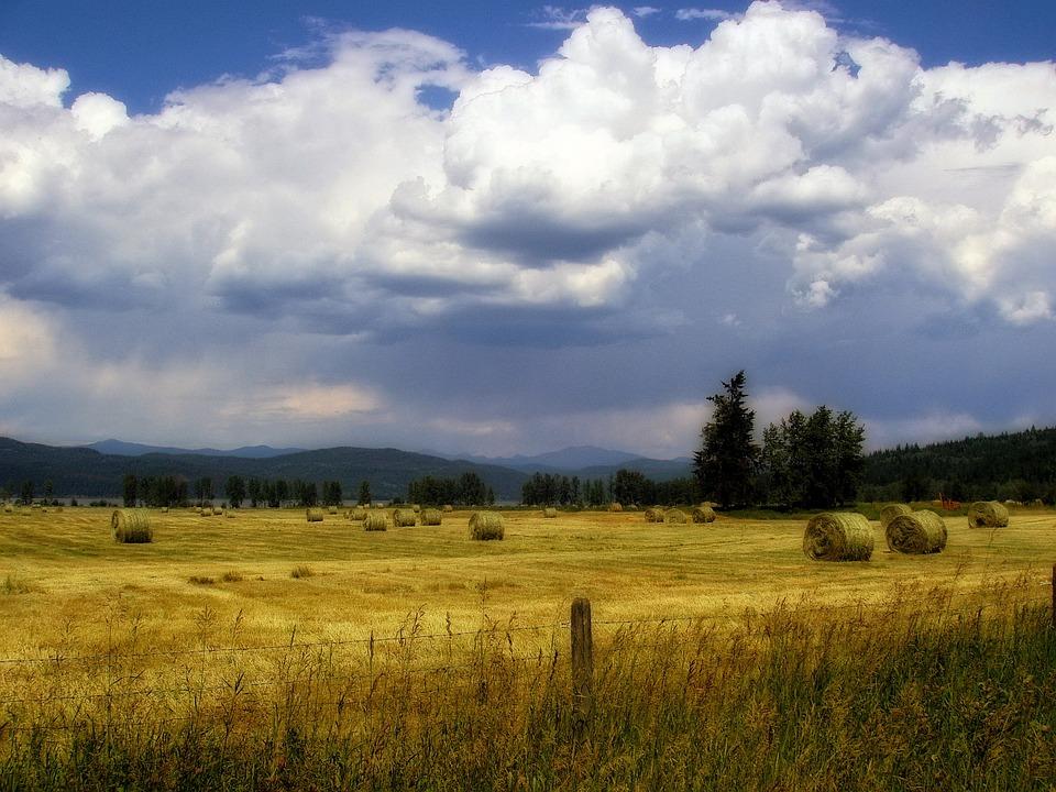Hayfield, Thunderstorm, Clouds, Sky, Scenery, Landscape