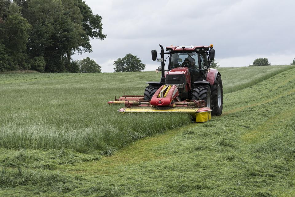 Lawn Mowing, Tractor, Mow, Farmers, Haymaking, Farmer