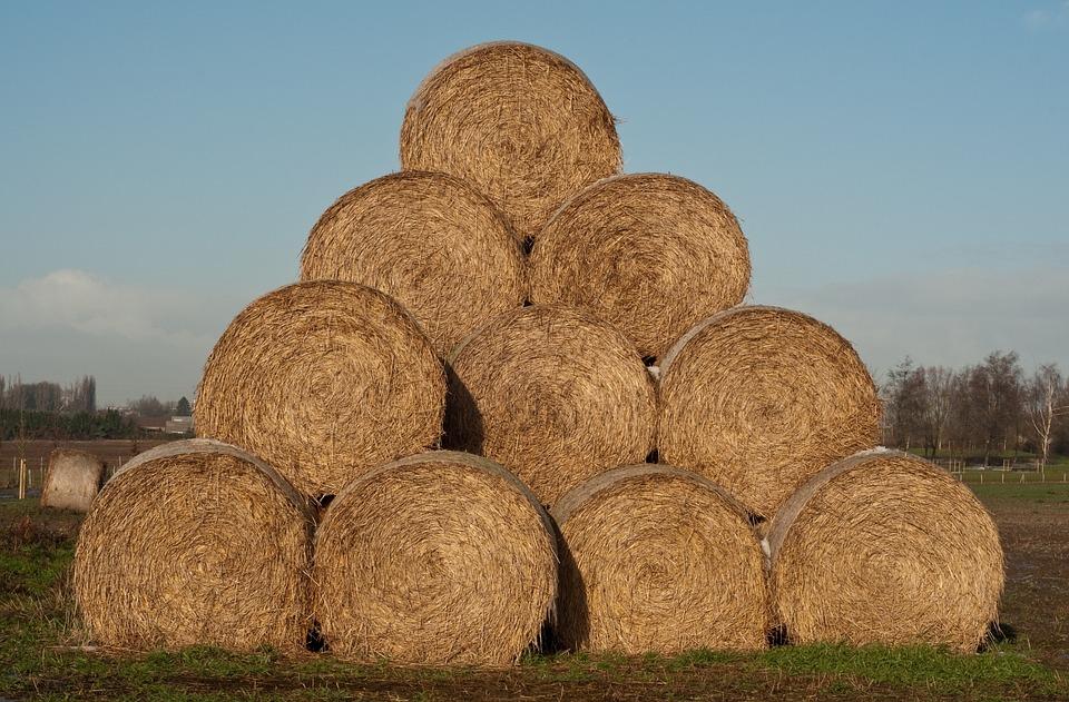 Haystack, Straw, Agriculture, Hay, Harvest
