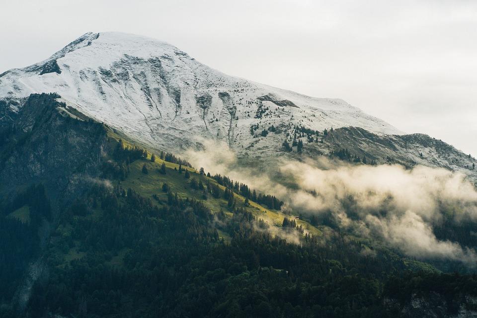 Mountains, Trees, Fog, Morning Fog, Haze, Mist, Forests