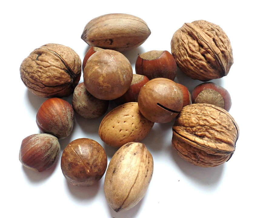 Nut, Walnut, Brazil Nut, Hazelnut, Brazil Nuts, Nut Mix