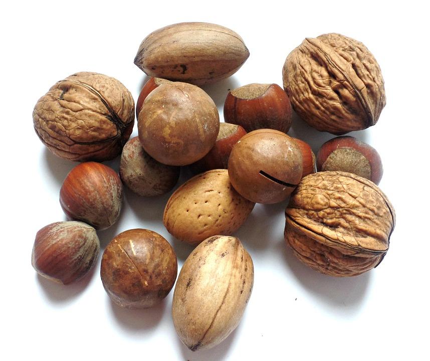 Nut, Walnut, Brazil Nut, Hazelnut, Brazil Nuts, Nut Mix