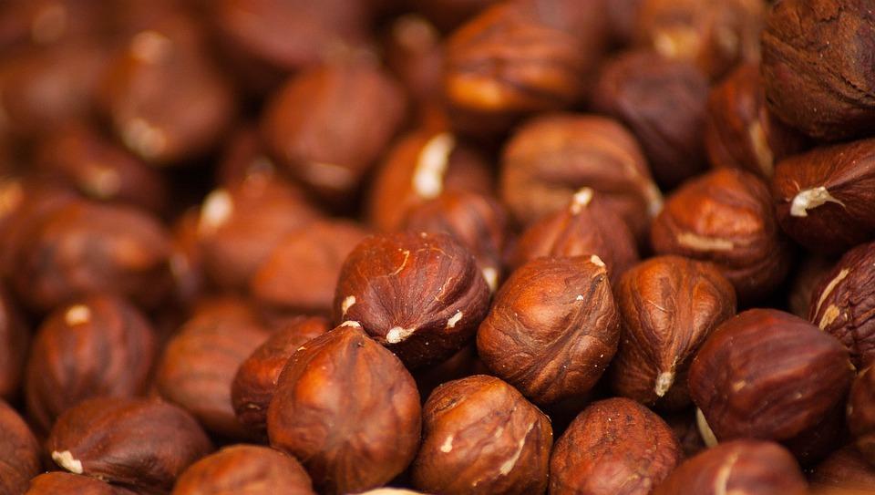 Hazelnuts, Dried Fruit, Hazel