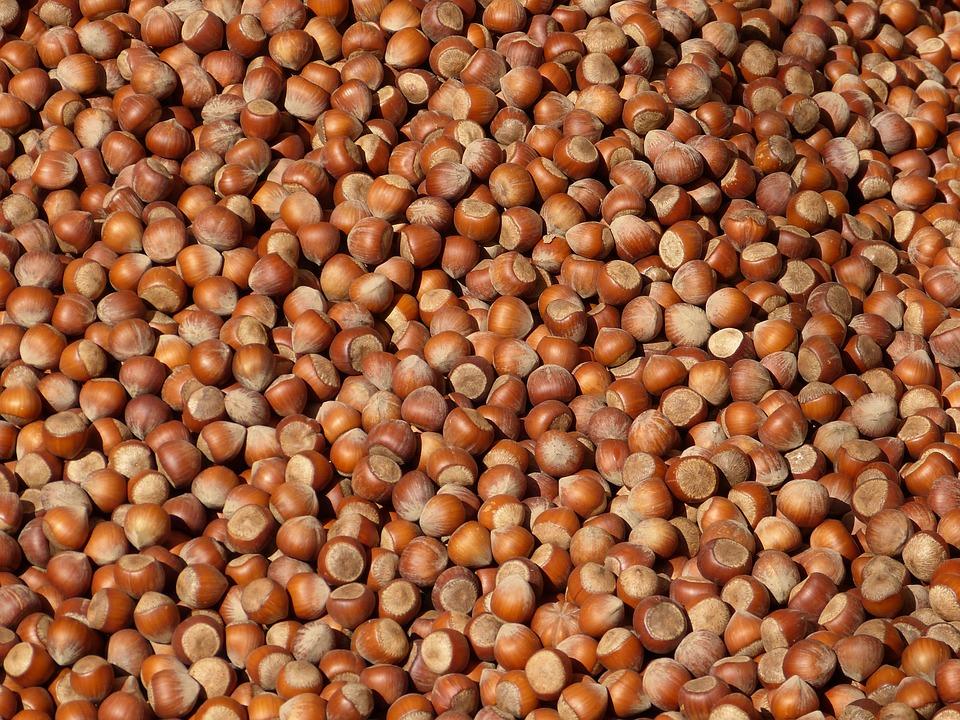 Hazelnuts, Nuts, Brown, Many, Background