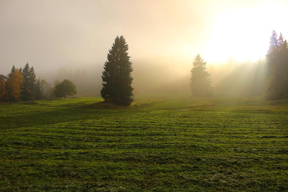 Light Through Clouds, Light, Sunlight, Hazy, Fog