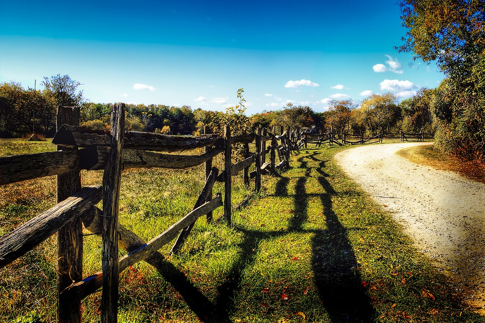 Dirt Road, Field Path, Gravel Road, Fence, Hdr