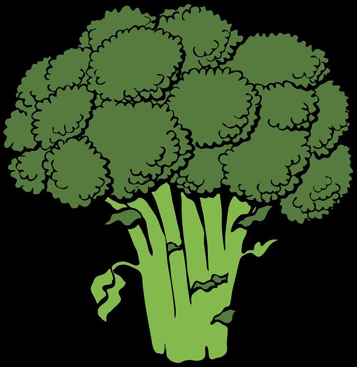 Broccoli, Bunch, Head, Green, Cruciferous, Healthy