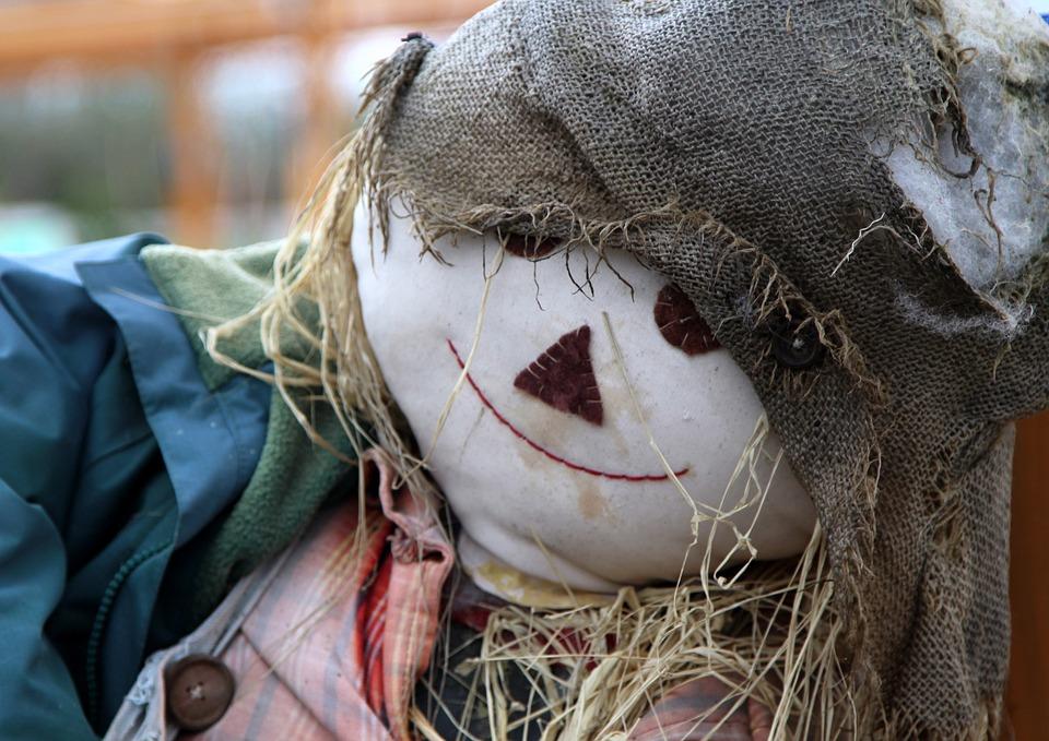 Nature, Face, Head, Scarecrow