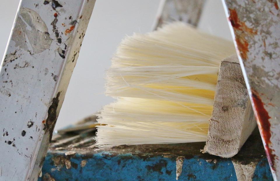 Quast, Renovation, Head, Brush, Broom, Painter, Color