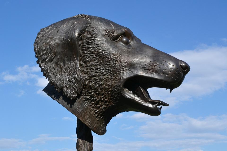 Sculpture, Ai Wei Wei, Dog, Bronze, Head