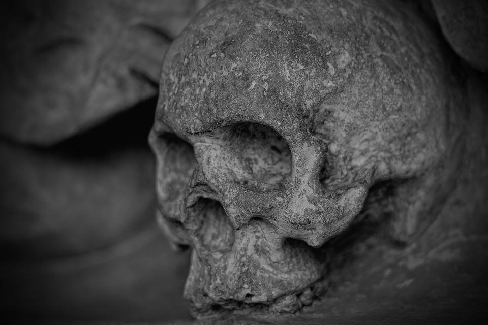 Skull, Skeleton, Monochrome, Dead, Face, Head