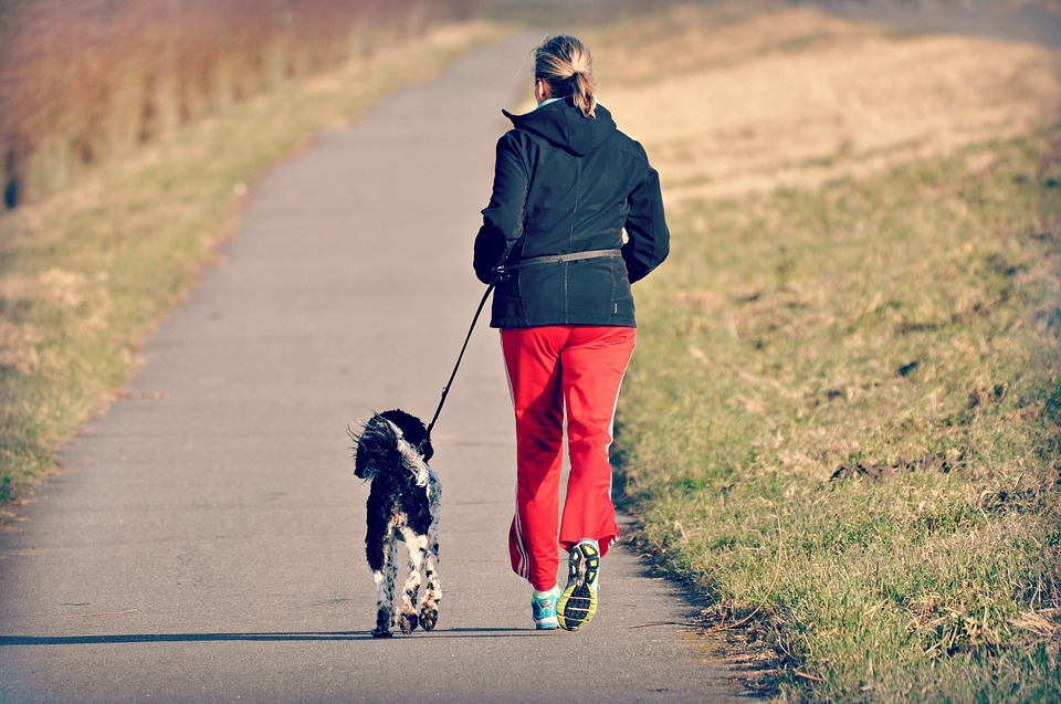 Woman, Person, Jogging, Dog, Exercise, Fitness, Health