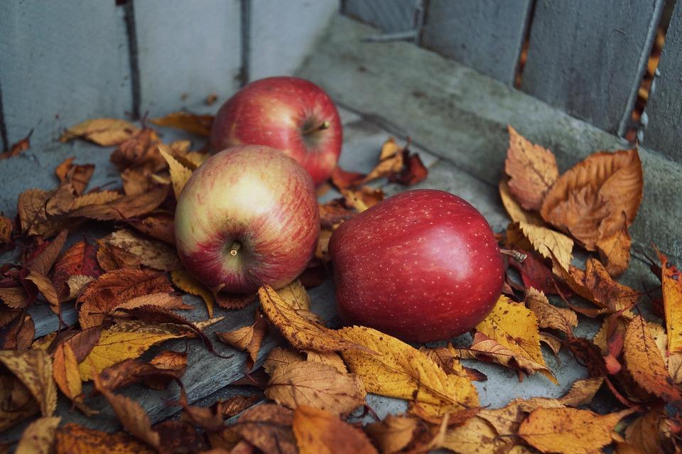 Autumn, Apple, Leaves, Vitamins, Harvest, Healthy