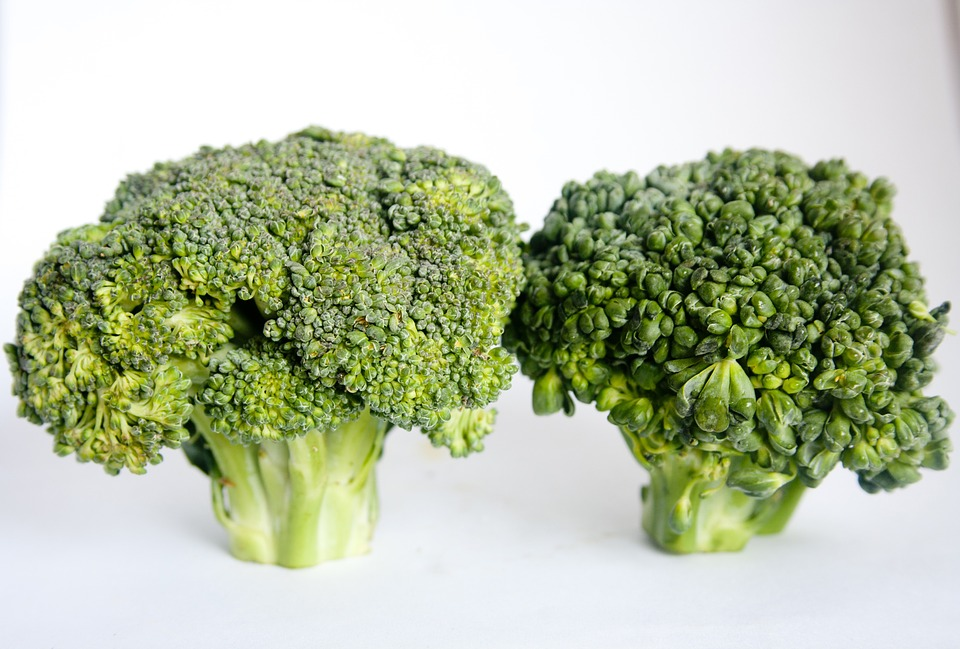 Broccoli, Vegetables, Healthy, Food, Diet, Green