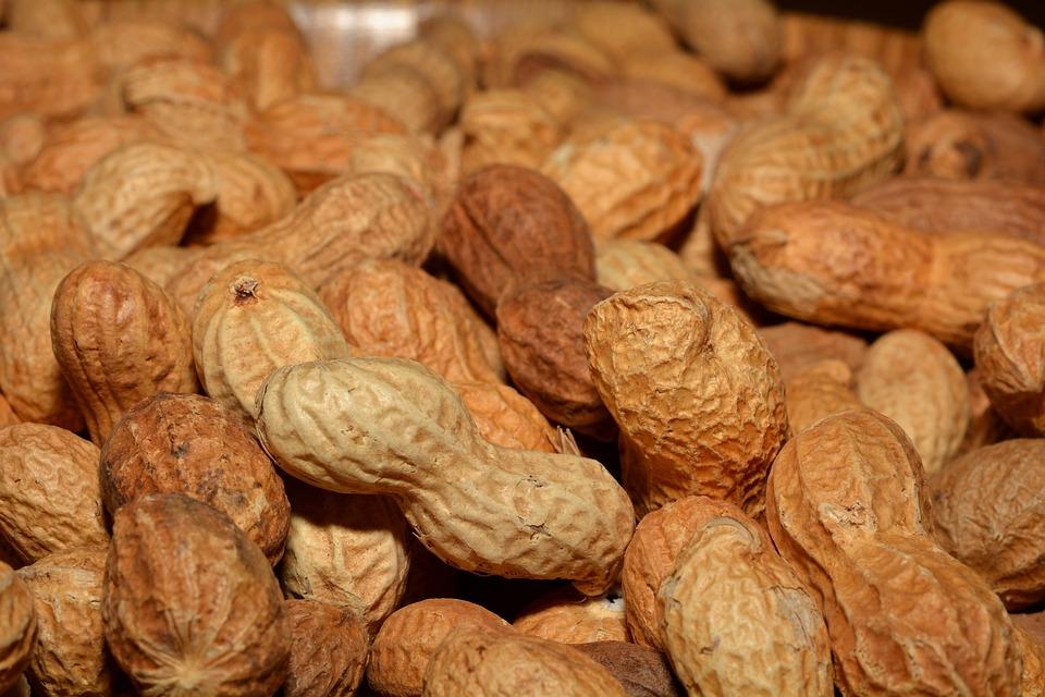 Peanuts, Nutrition, Healthy, Food, Close