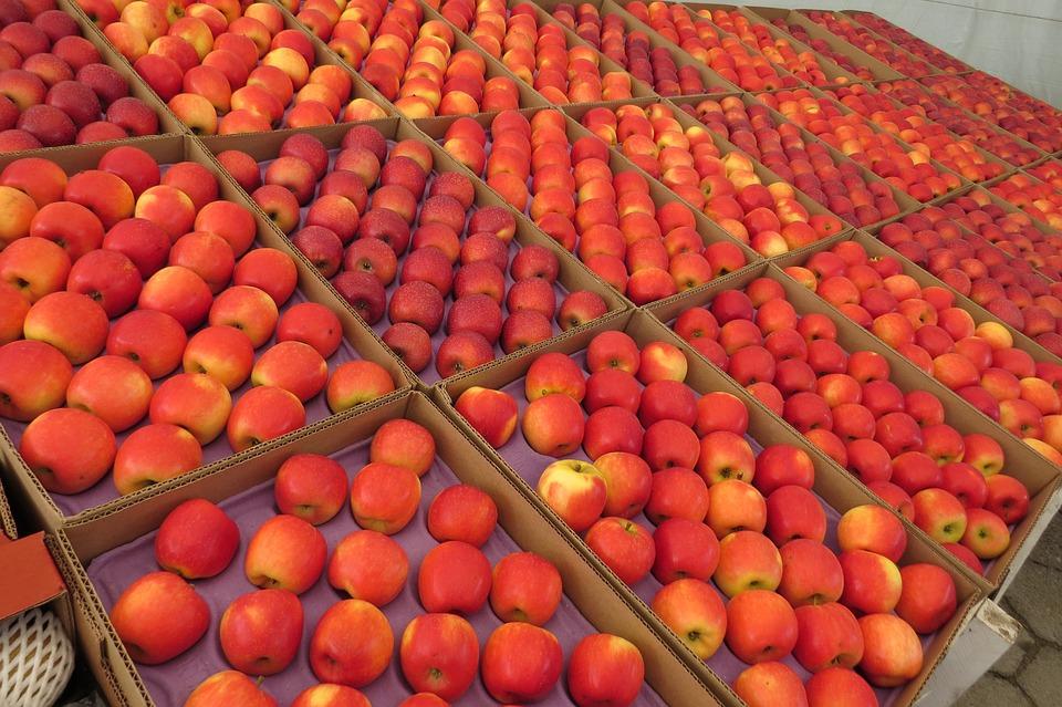 Apple, Fruit, Bite, Healthy Food, Healthy, Health