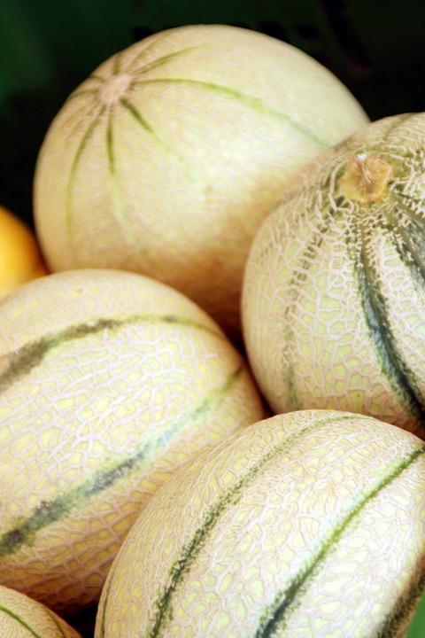 Melon, Melons, Green, Eat, Market, Healthy, Bio, Frisch