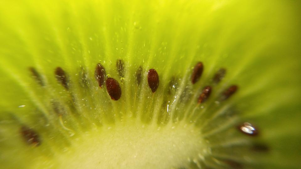 Kiwi, Fruit, Green, Healthy, Food, Diet, Fresh, Organic