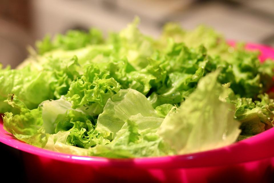 Food, Healthy, Lettuce, Salad, Vegetables