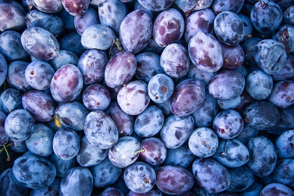 Plum, Fruit, Food, Organic, Fresh, Healthy, Sweet