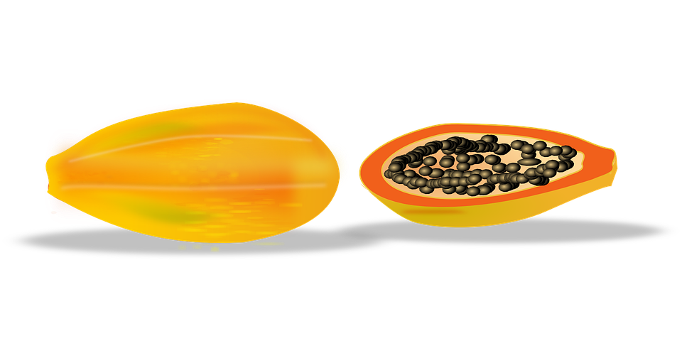 Papaya, Slice, Sliced, Fruit, Tropical, Healthy, Fresh