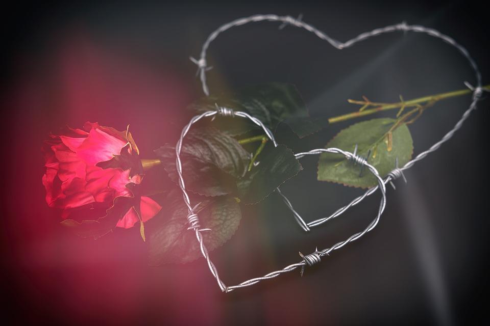 Heart, Love, Romance, Relationship, Connectedness