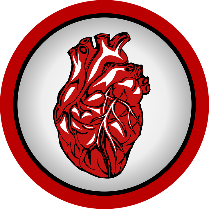 Heart, Heartbeat, Medical, Frequency, Doctor, Circuit