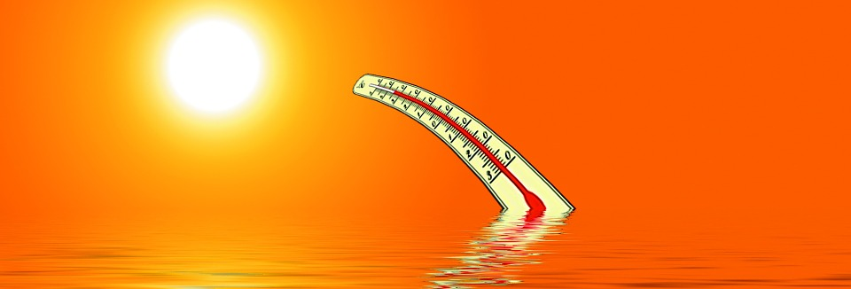 Thermometer, Sun, Water, Reflection, Heat, Summer