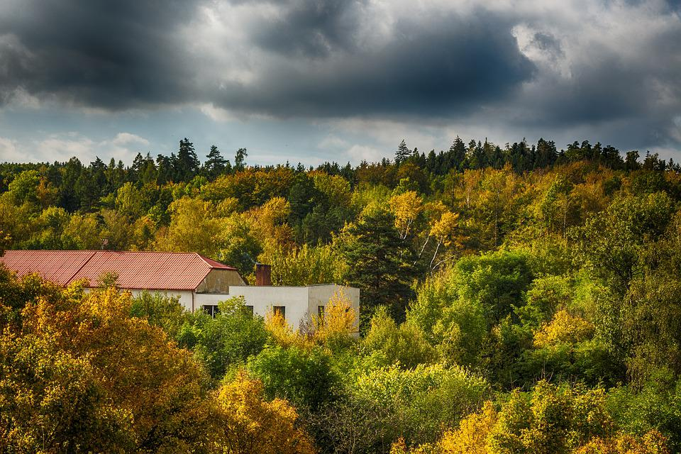 Forest, Building, Heaven, Hdr