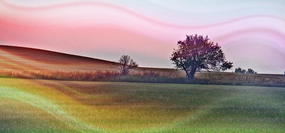 Landscape, Light, Nature, Tree, Autumn, Heaven