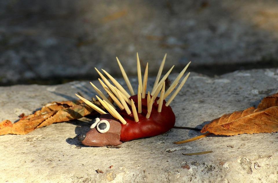 Autumn, Hedgehog, Decoration, Fun, Creativity