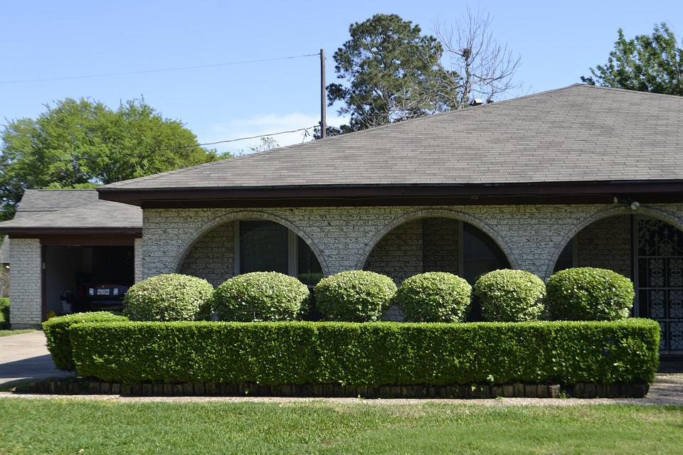Lawncare, Hedges, Trimmed, Garden, Perfect, Round